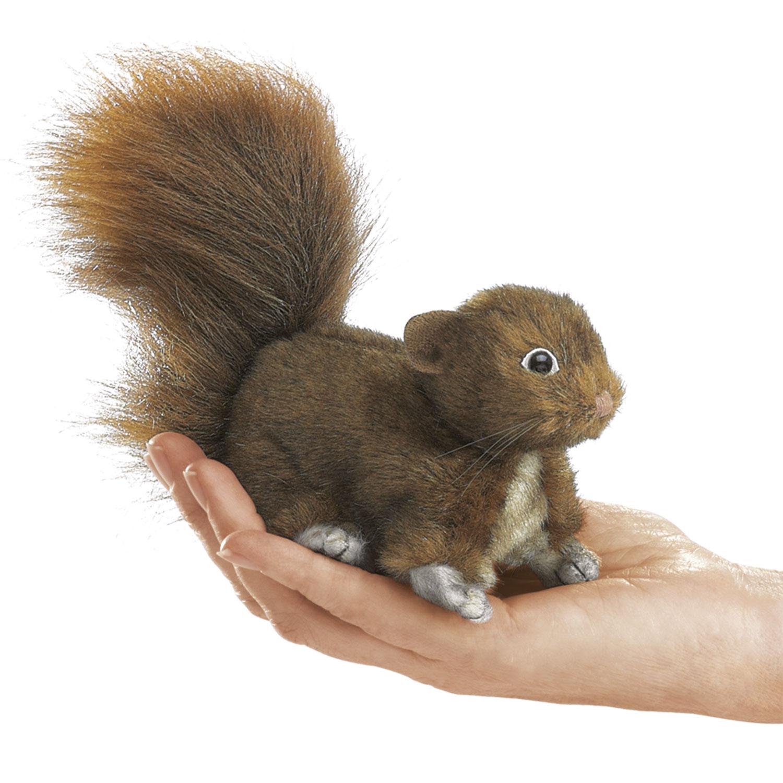 Eichhörnchen Rot